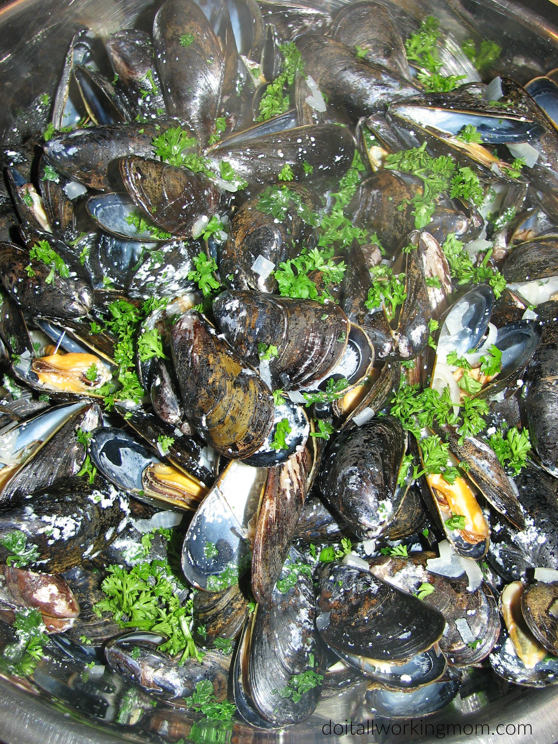 Mussels in Creamy Sauce