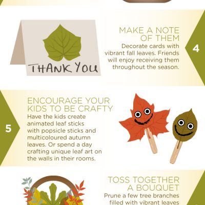 How to re-use fallen leaves